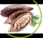 Chocolate Slim Természetes Fogyókúras Termék